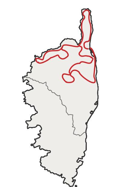 Circuit Cap Corse et haute Corse