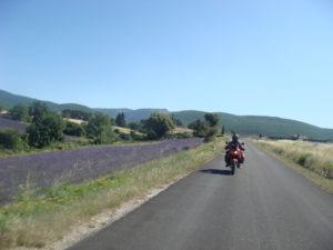 Provence et routes de la lavande