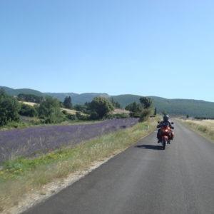 moto sur les routes de la lavande
