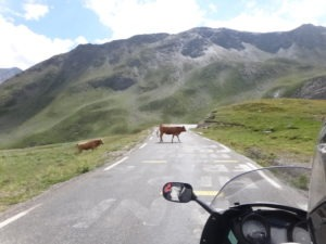 Rencontre dans les Alpes en voyage moto