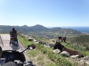 moto-Anes-St-Antonino-corse