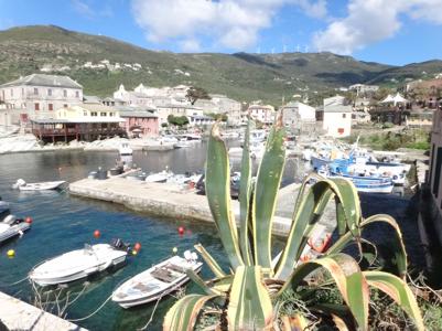 Centuri, village de pêcheur en Corse à découvrir en moto